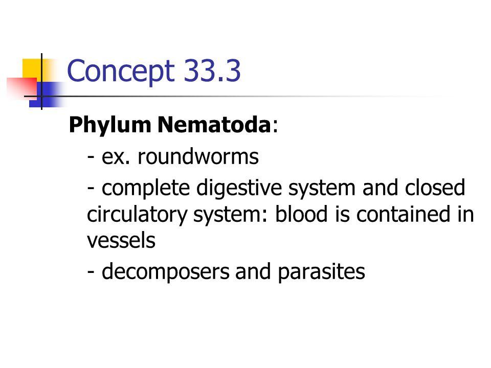 Concept 33.3 Phylum Nematoda: - ex. roundworms