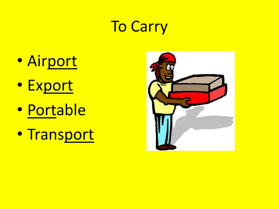 To Carry Airport Export Portable Transport