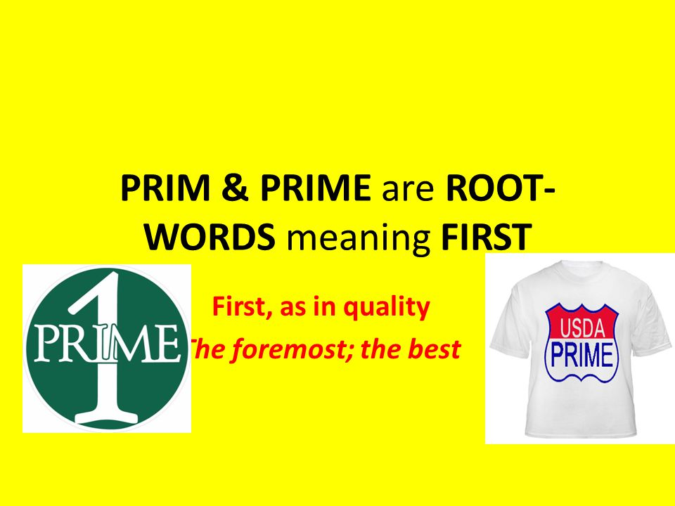 PRIM & PRIME are ROOT-WORDS meaning FIRST