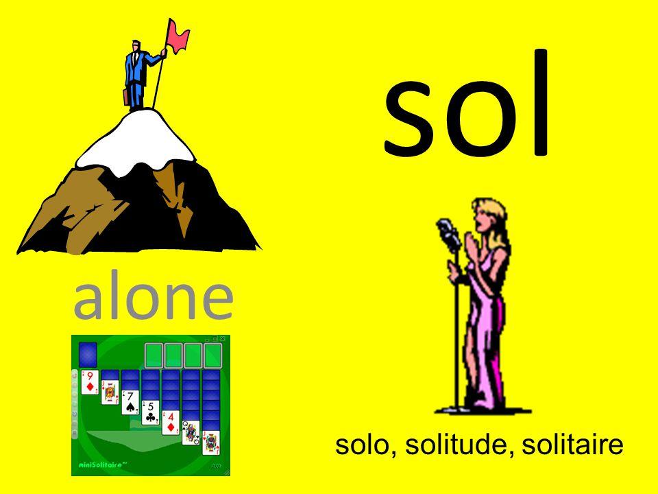 solo, solitude, solitaire