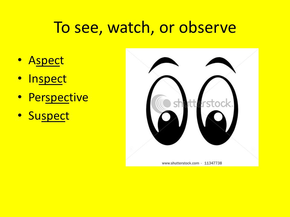 To see, watch, or observe Aspect Inspect Perspective Suspect