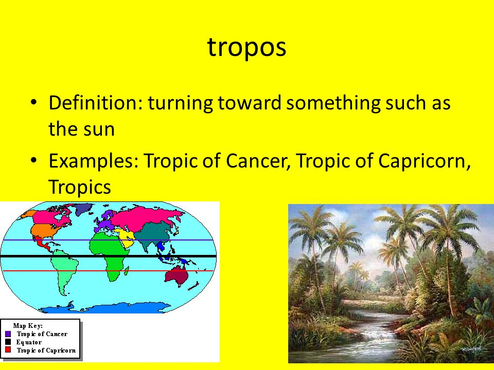 tropos Definition: turning toward something such as the sun