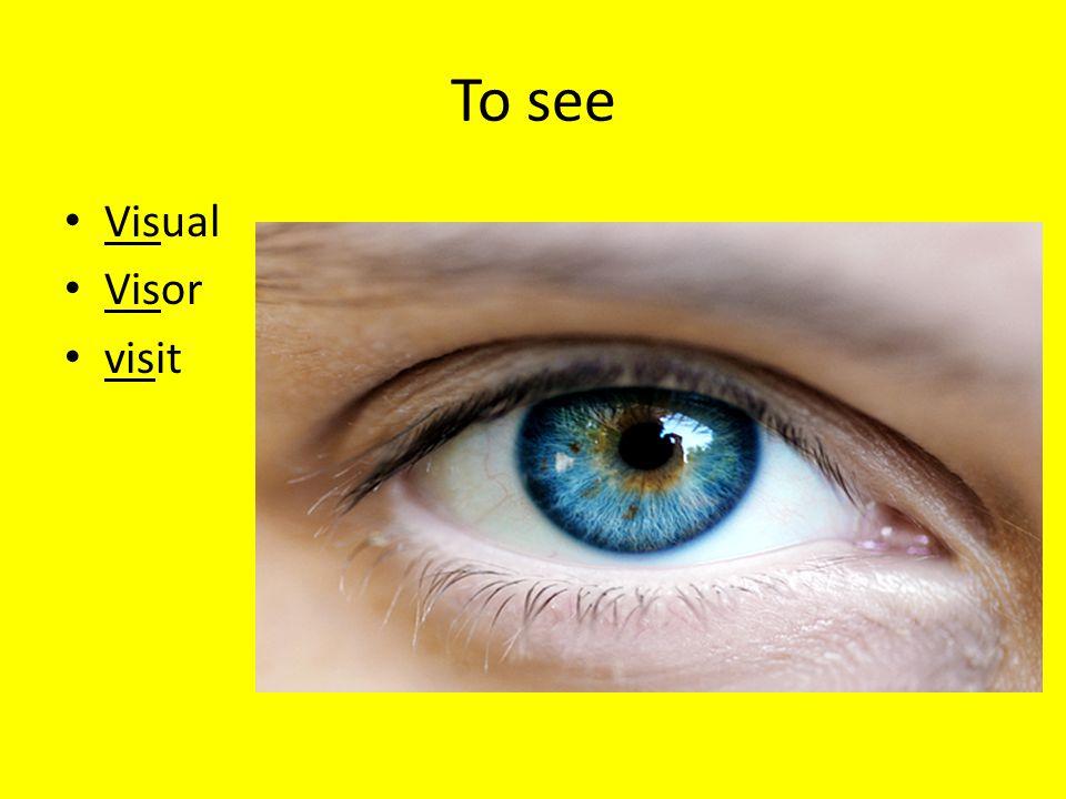 To see Visual Visor visit