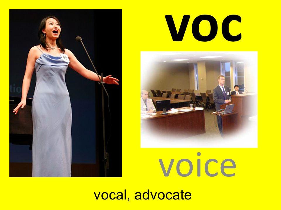 voc voice vocal, advocate