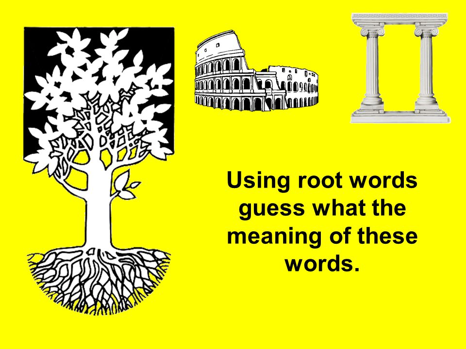 Using root words guess what the meaning of these words.