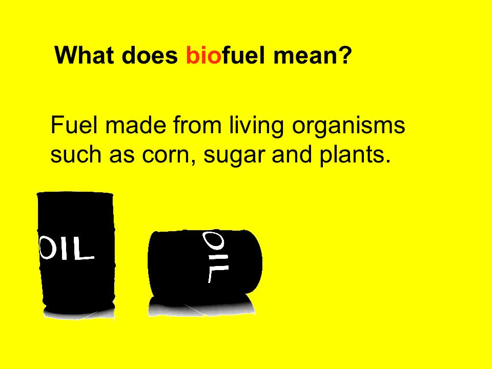 What does biofuel mean Fuel made from living organisms such as corn, sugar and plants.