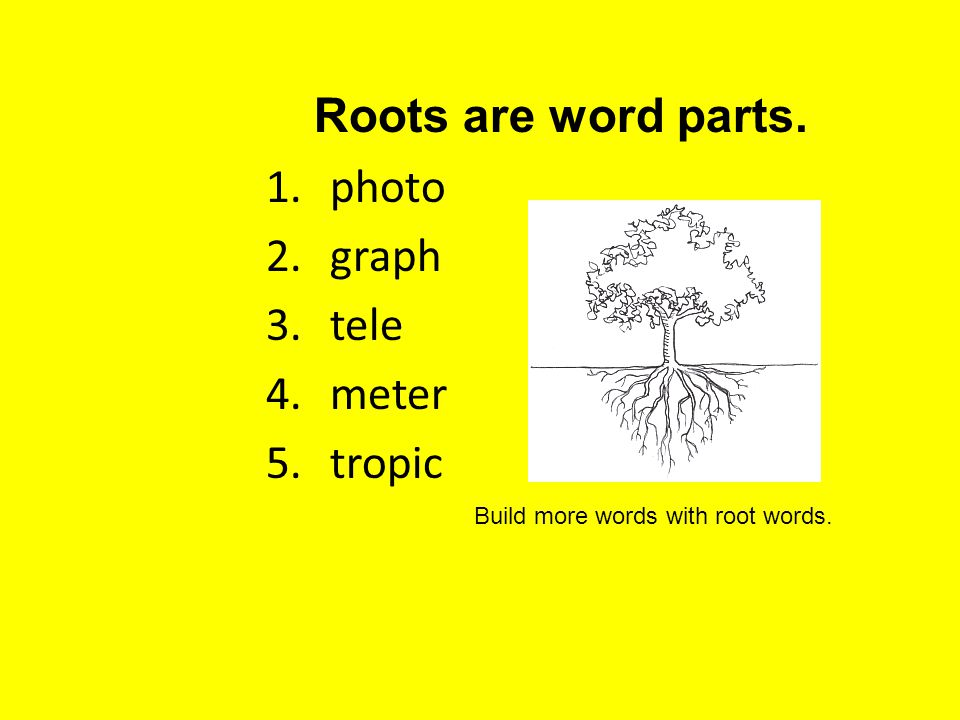 Roots are word parts. photo graph tele meter tropic