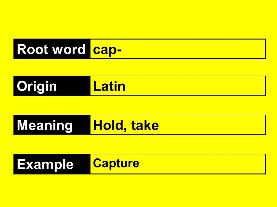 Root word cap- Origin Latin Meaning Hold, take Example Capture