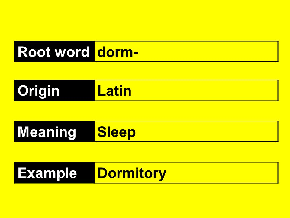 Root word dorm- Origin Latin Meaning Sleep Example Dormitory
