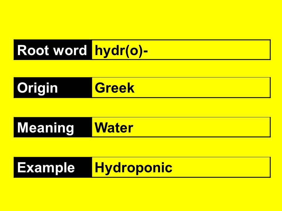 Root word hydr(o)- Origin Greek Meaning Water Example Hydroponic
