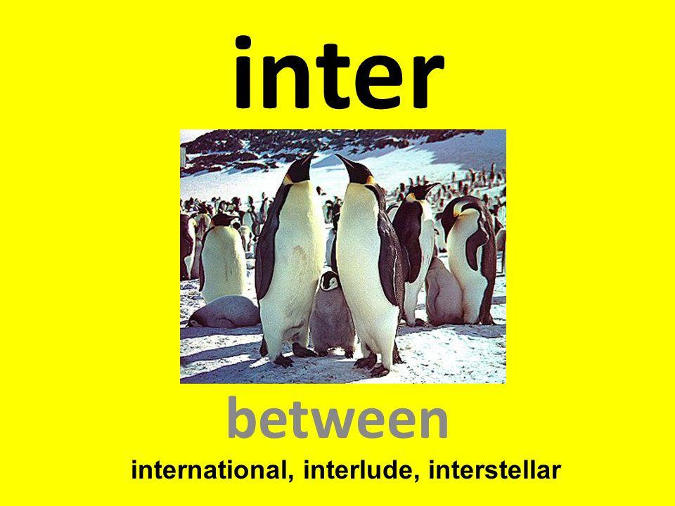 international, interlude, interstellar