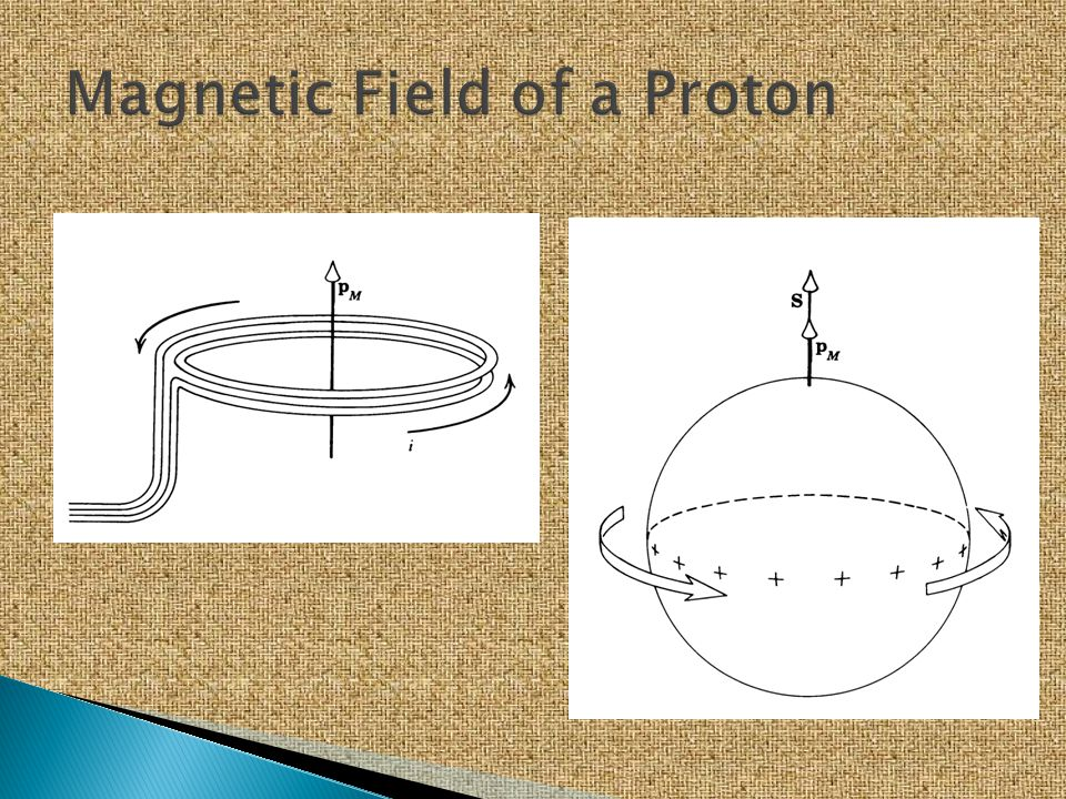 Magnetic Field of a Proton