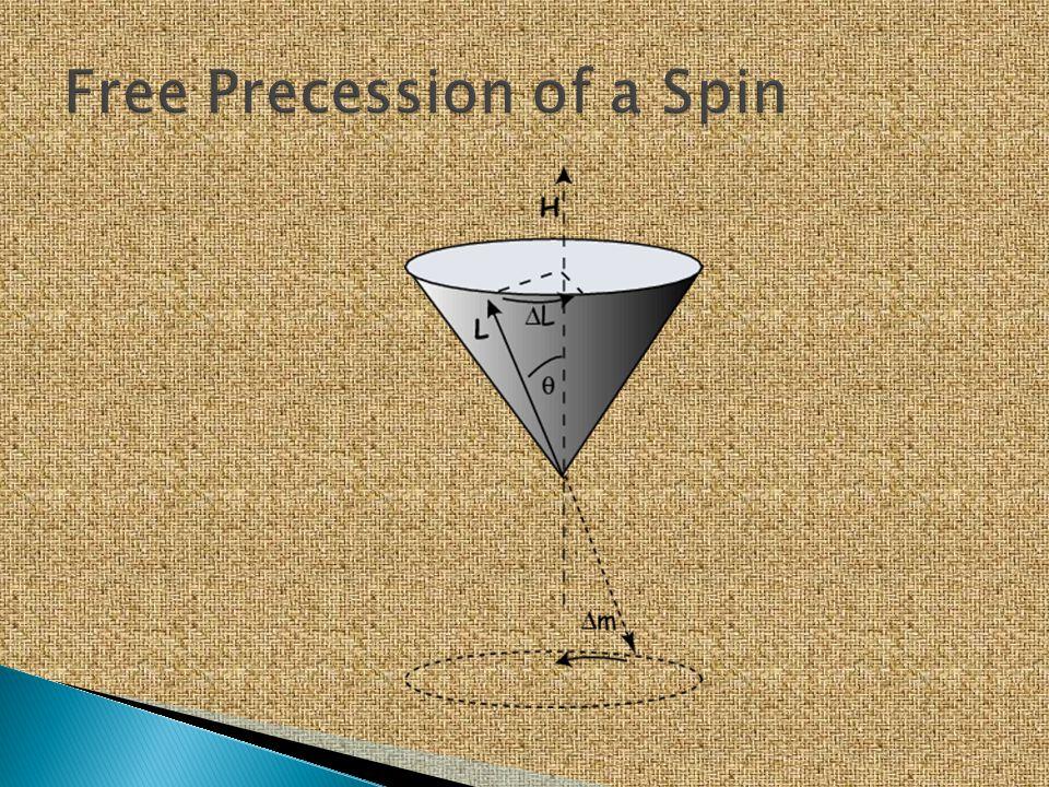 Free Precession of a Spin