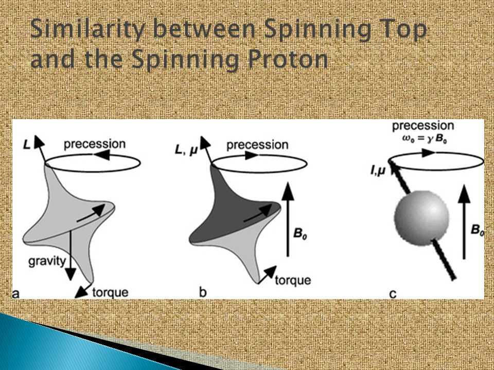 Similarity between Spinning Top and the Spinning Proton