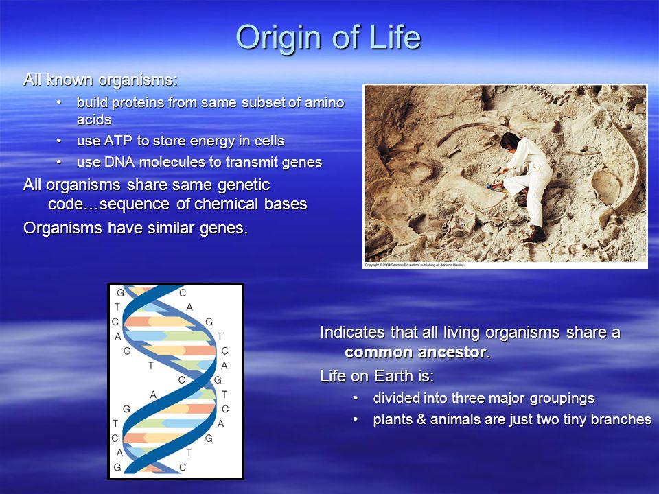 Origin of Life All known organisms: