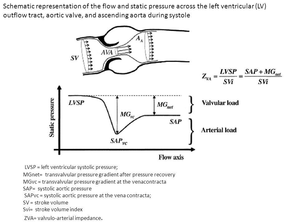 LVSP = left ventricular systolic pressure;