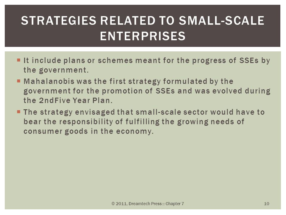 Strategies Related to Small-Scale Enterprises