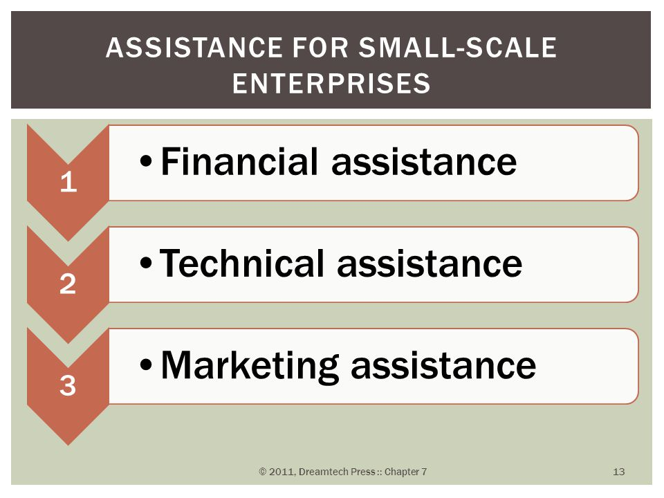 Assistance for Small-Scale Enterprises