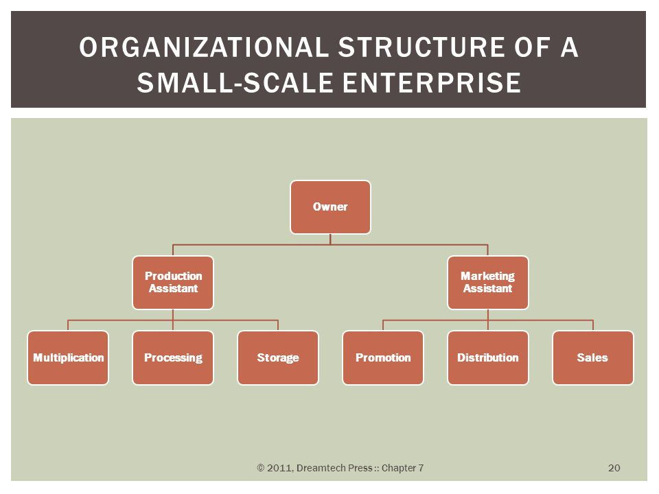 Organizational Structure of a Small-Scale Enterprise