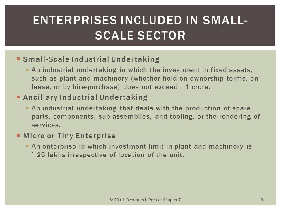 Enterprises Included in Small-Scale Sector