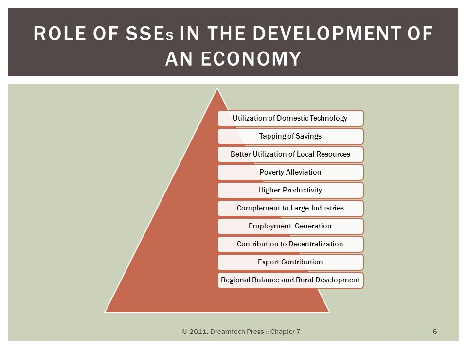 Role of SSEs in the Development of an Economy