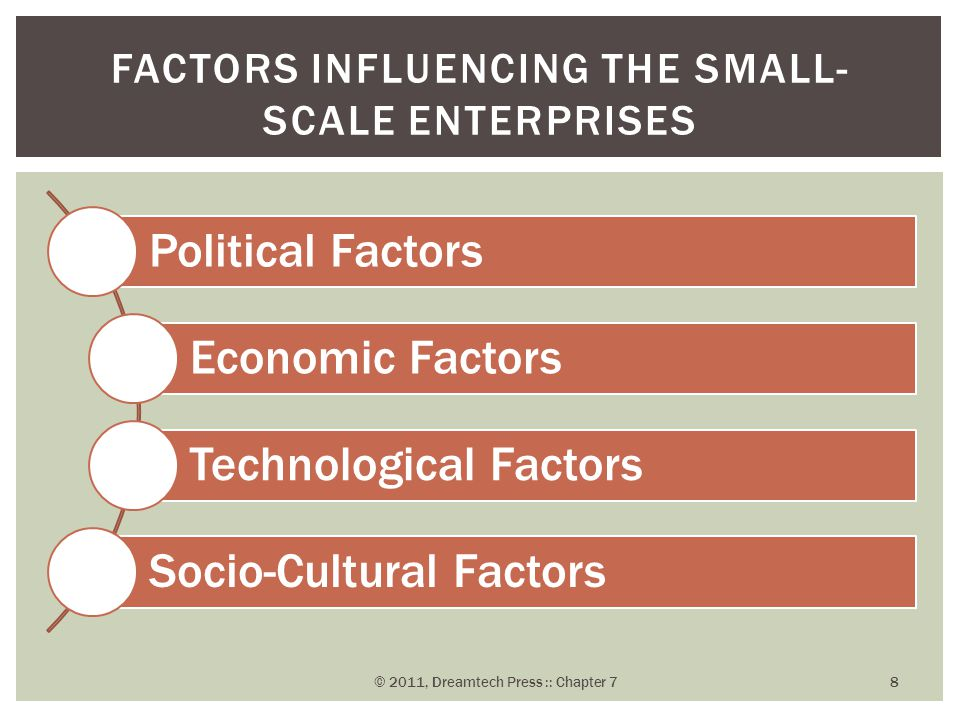 Factors Influencing the Small-Scale Enterprises