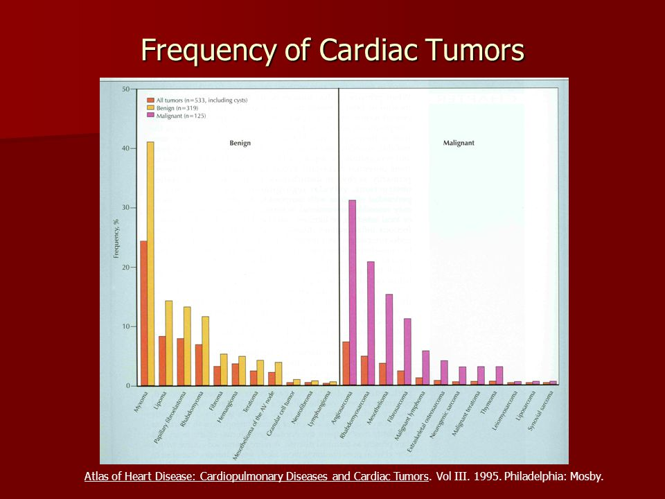 Frequency of Cardiac Tumors