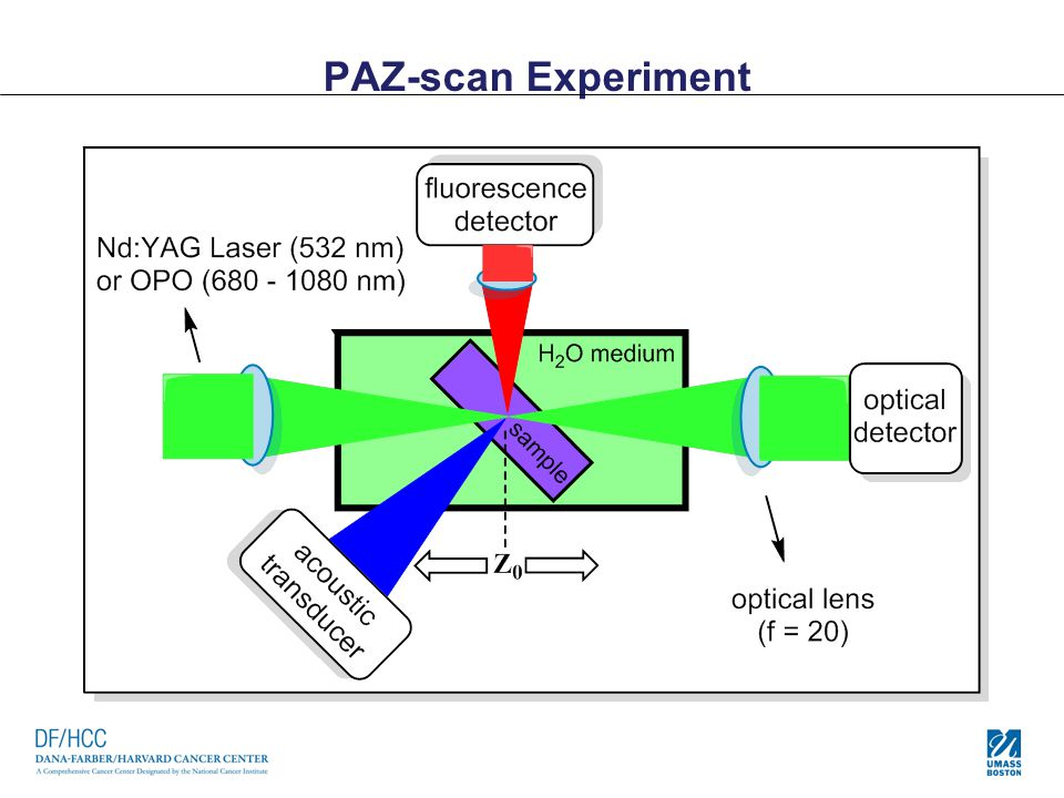 PAZ-scan Experiment
