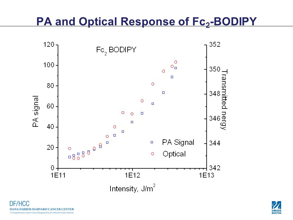 PA and Optical Response of Fc2-BODIPY