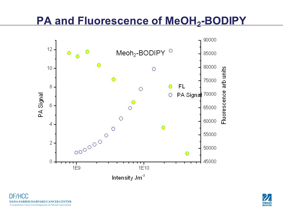 PA and Fluorescence of MeOH2-BODIPY