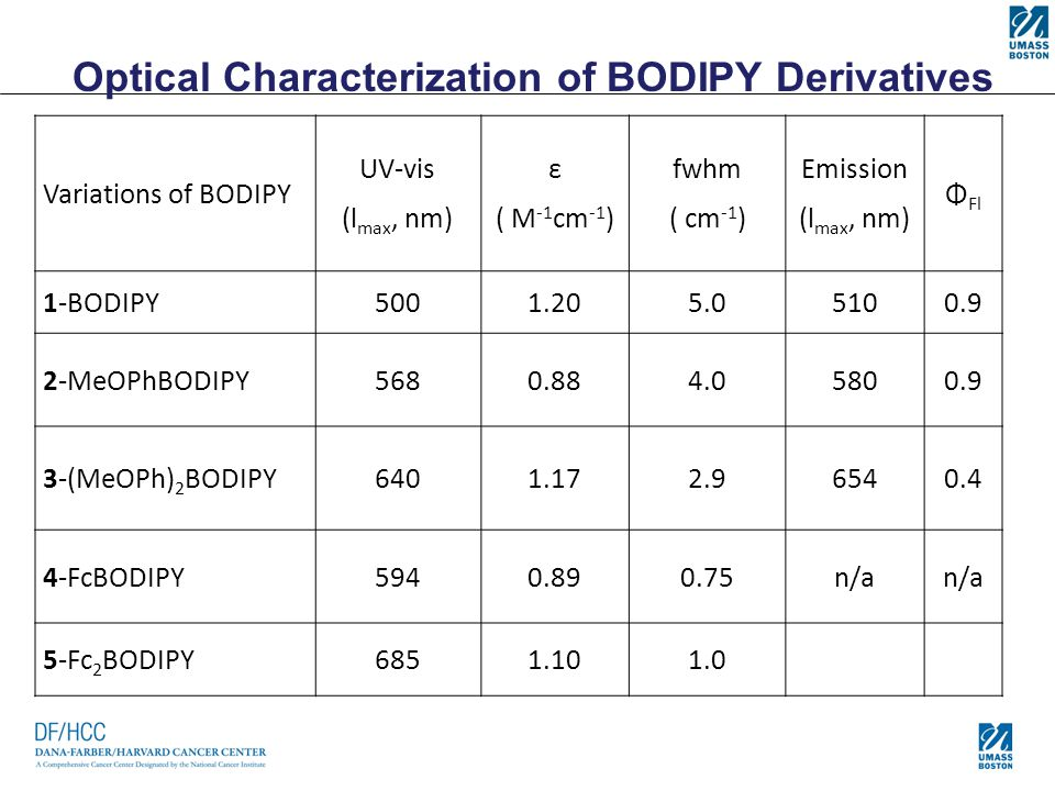 Optical Characterization of BODIPY Derivatives