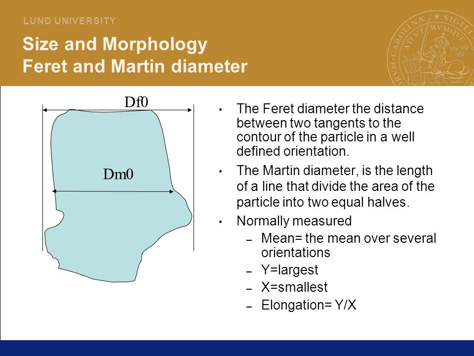 Size and Morphology Feret and Martin diameter