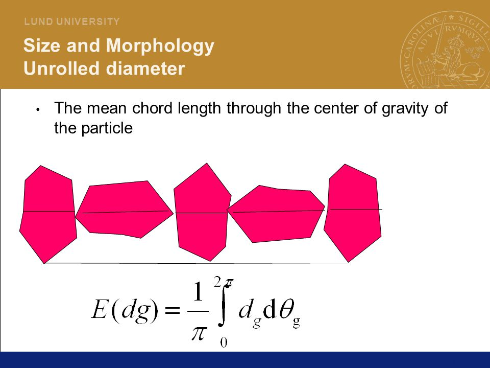 Size and Morphology Unrolled diameter