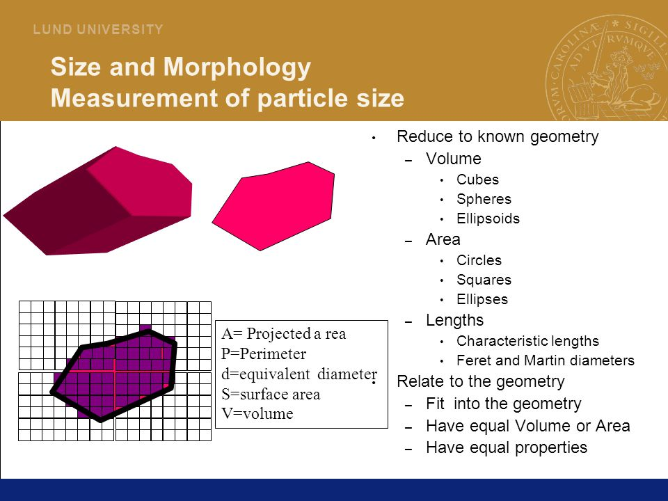 Size and Morphology Measurement of particle size