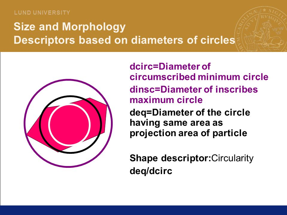 Size and Morphology Descriptors based on diameters of circles