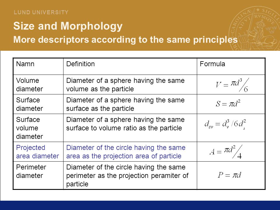 Size and Morphology More descriptors according to the same principles