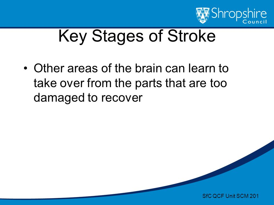 Key Stages of Stroke Other areas of the brain can learn to take over from the parts that are too damaged to recover.