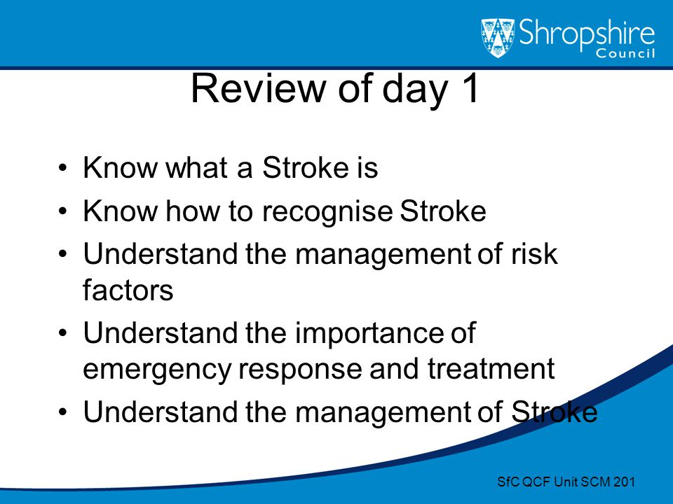 Review of day 1 Know what a Stroke is Know how to recognise Stroke