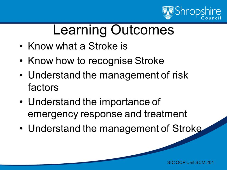 Learning Outcomes Know what a Stroke is Know how to recognise Stroke