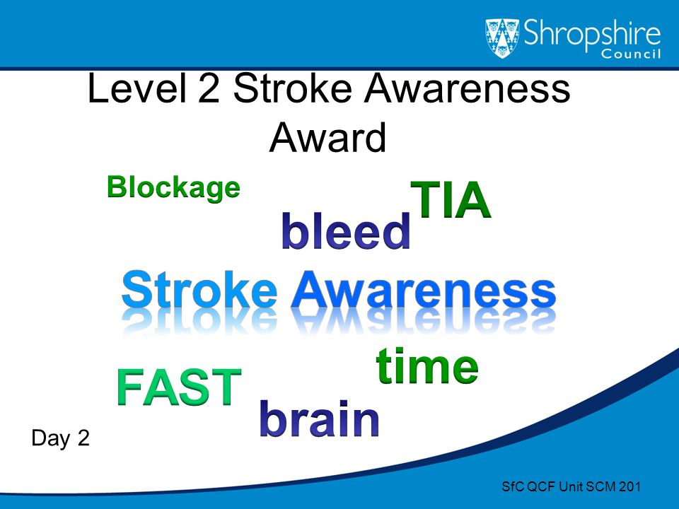 Level 2 Stroke Awareness Award