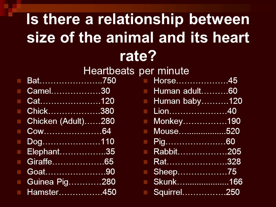Is there a relationship between size of the animal and its heart rate