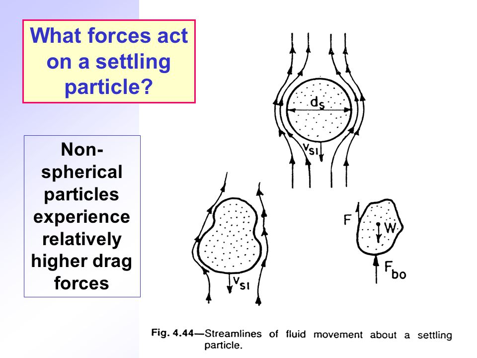 What forces act on a settling particle