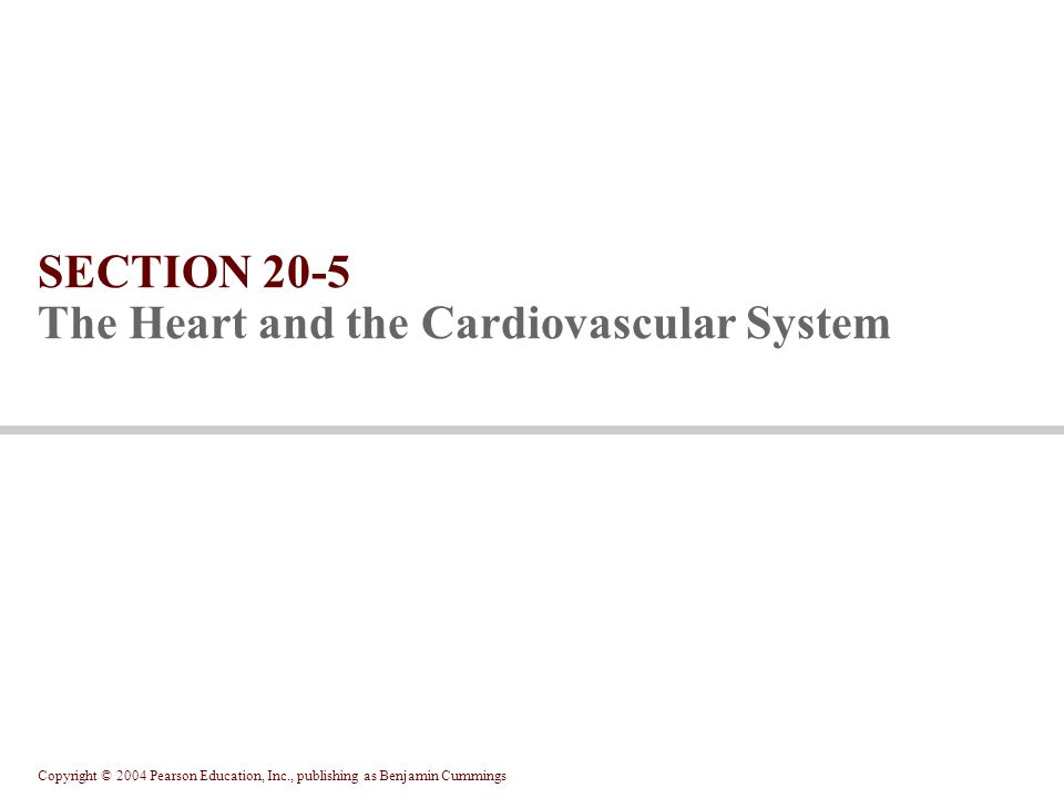 SECTION 20-5 The Heart and the Cardiovascular System