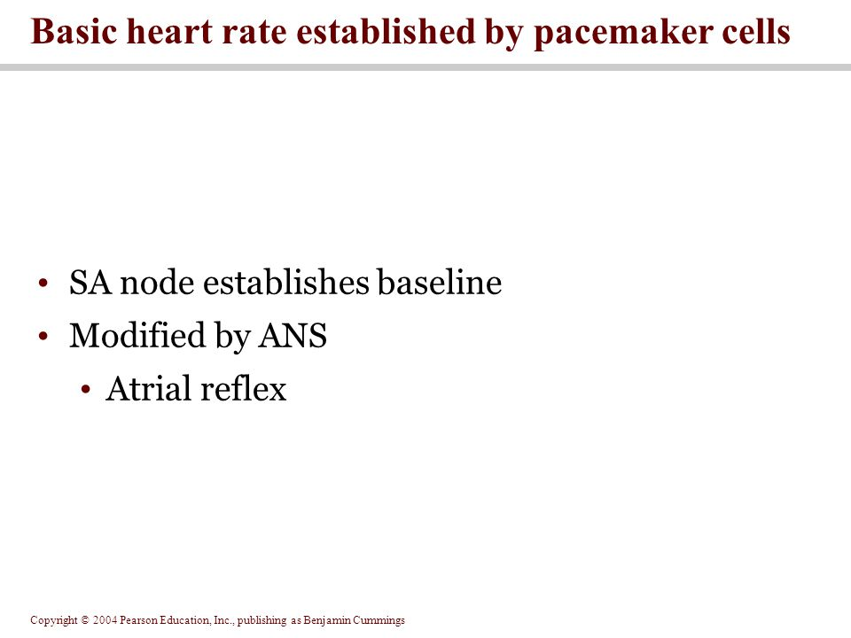 Basic heart rate established by pacemaker cells