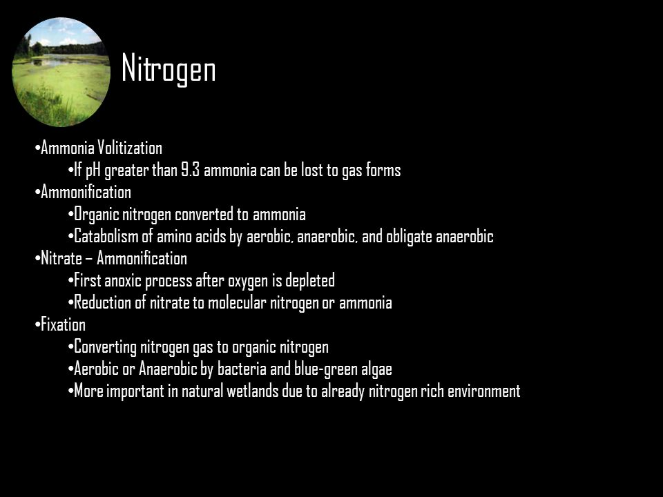 Nitrogen Ammonia Volitization