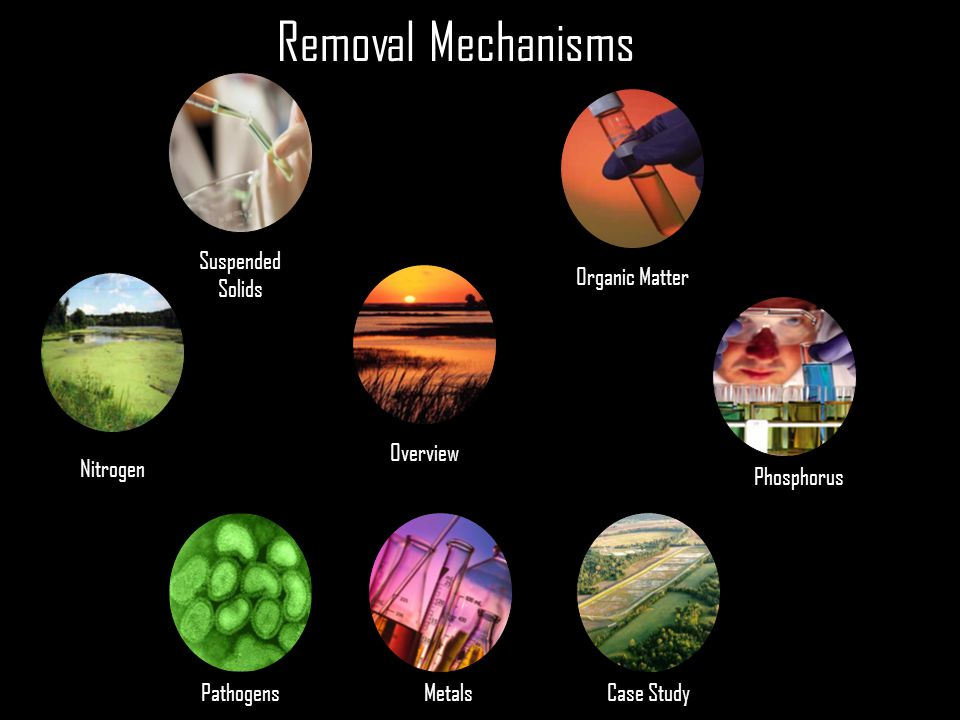 Removal Mechanisms Suspended Solids Organic Matter Overview Nitrogen
