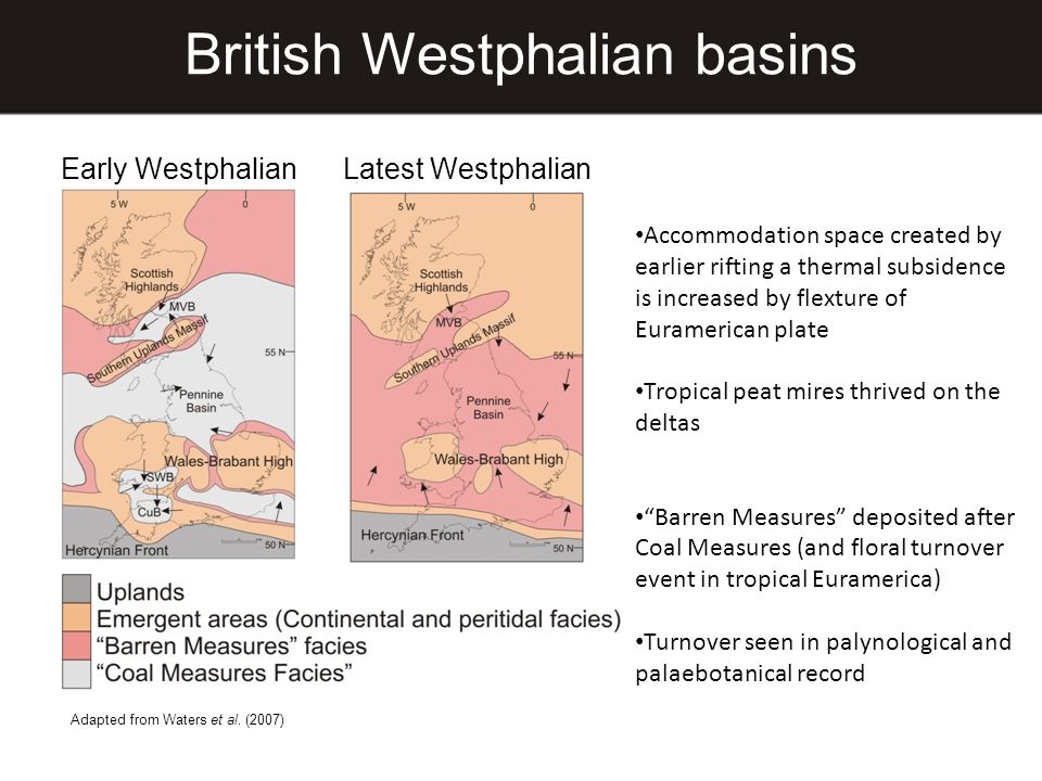 British Westphalian basins