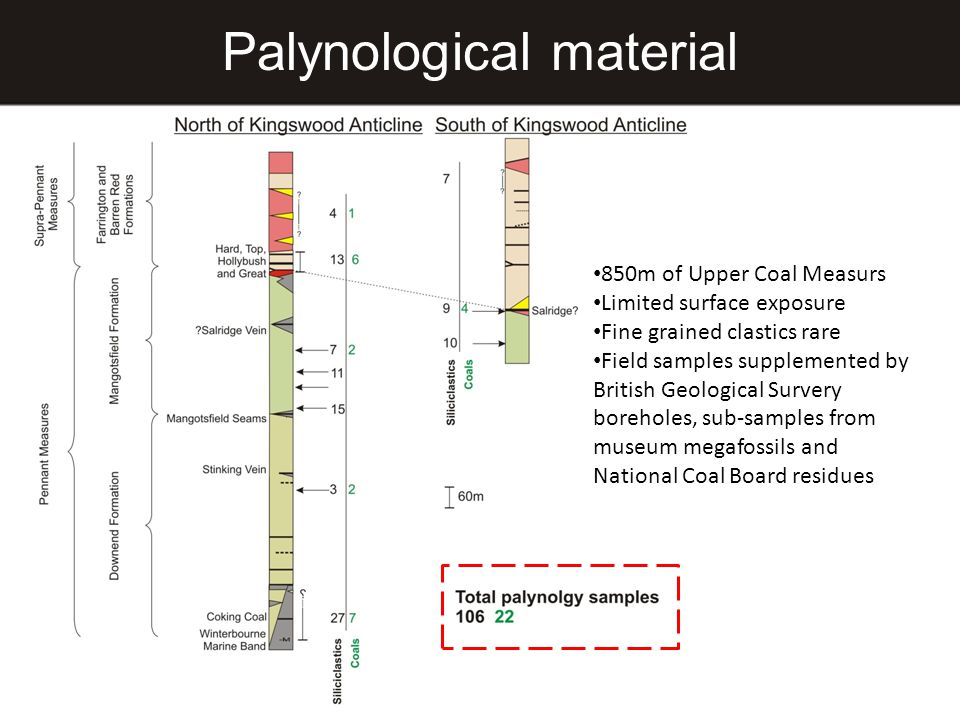 Palynological material