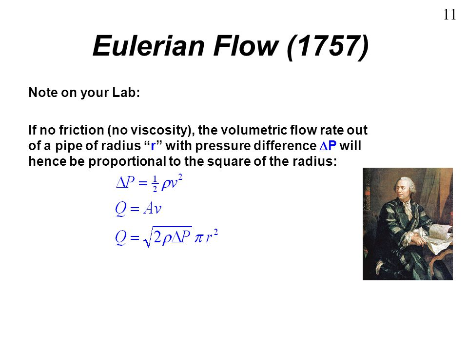 Eulerian Flow (1757) 11 Note on your Lab: