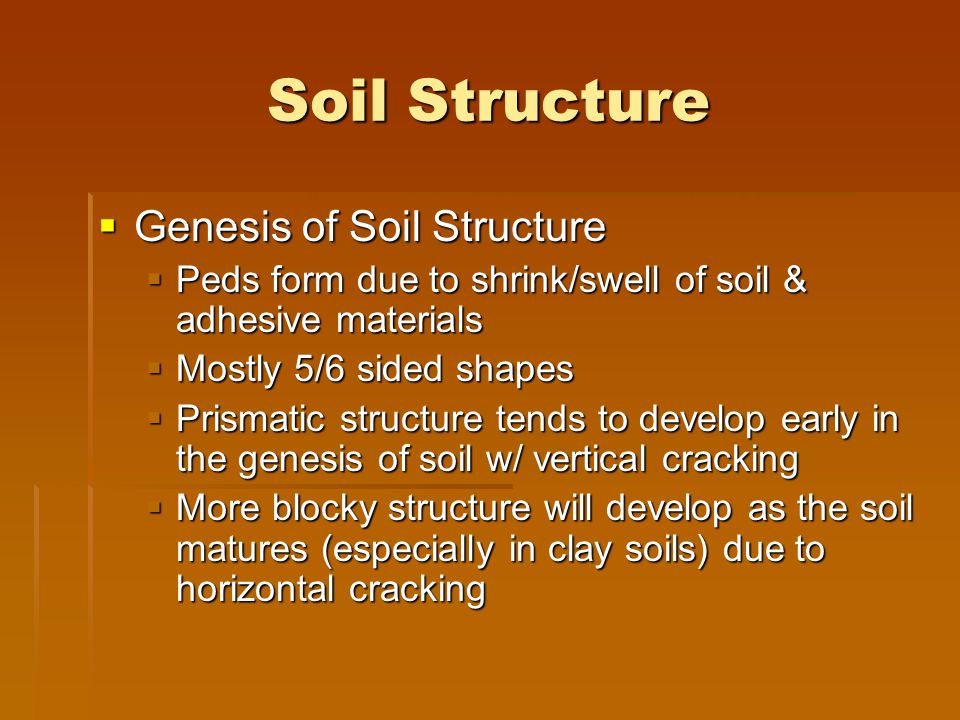 Soil Structure Genesis of Soil Structure